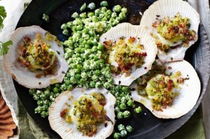 Scallops with breadcrumbs and peas